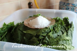 Dolmablad met zout