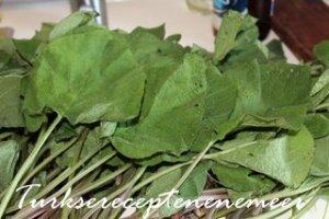 Borage bladeren voor kaldirik kızartması